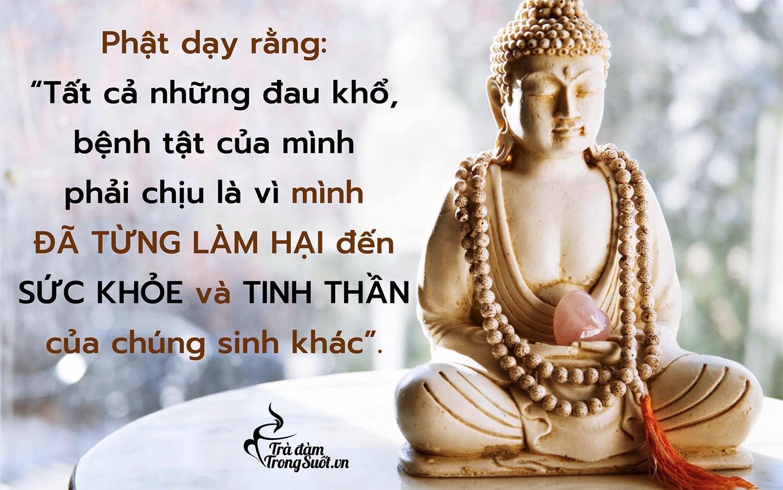 Q24_Phat day rang